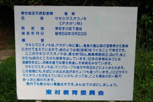 2011-09-10-005