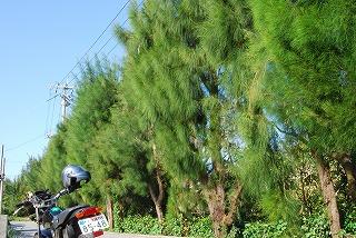 2010_12_18_urasoe_012