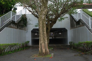 2011_02_11_035