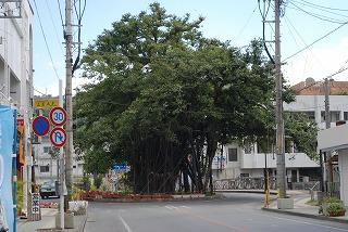 2011_03_05_042