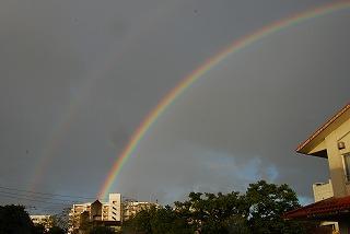 2011_01_17_004