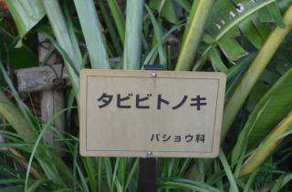 2012_07_25_001