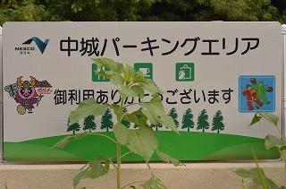 2012_07_25_004_2