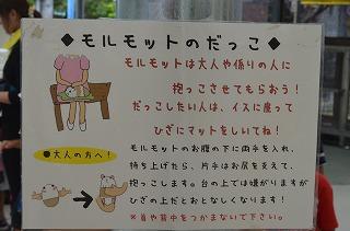 2012_07_31_002